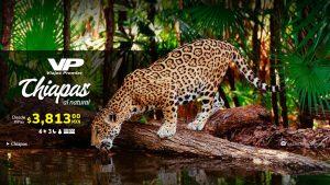 Chiapas al natural